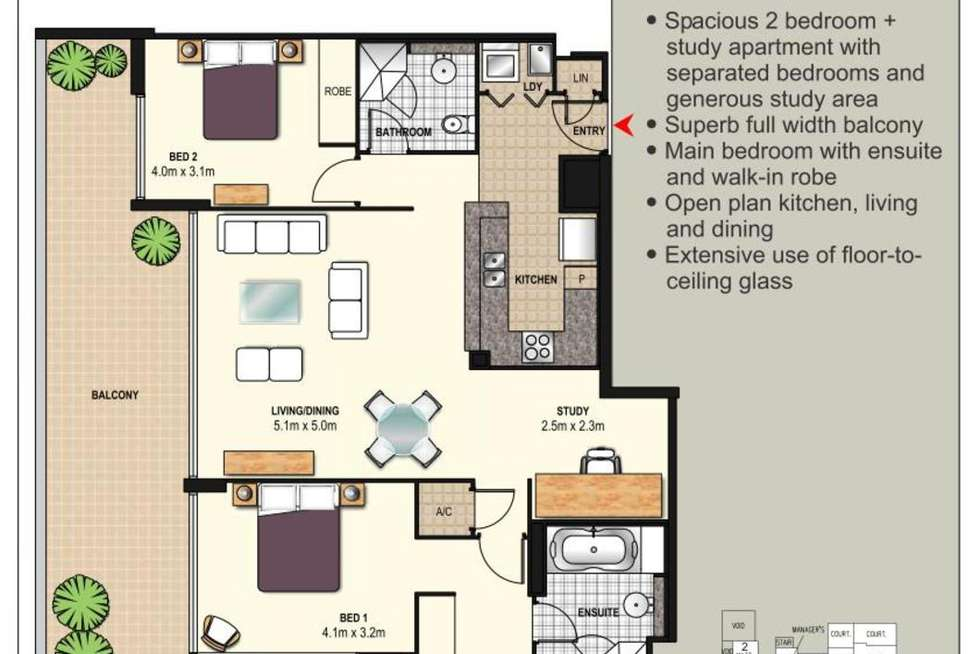 Floorplan of Homely apartment listing, 305/5 Potter Street, Waterloo NSW 2017
