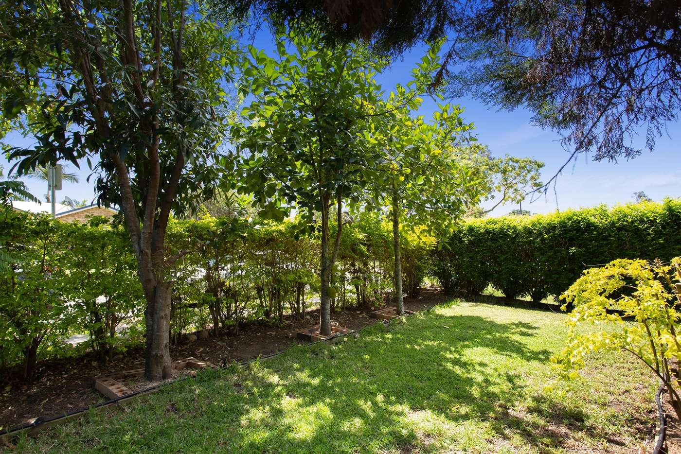 Main view of Homely house listing, 20 Bloomsbury Crescent, Moggill QLD 4070