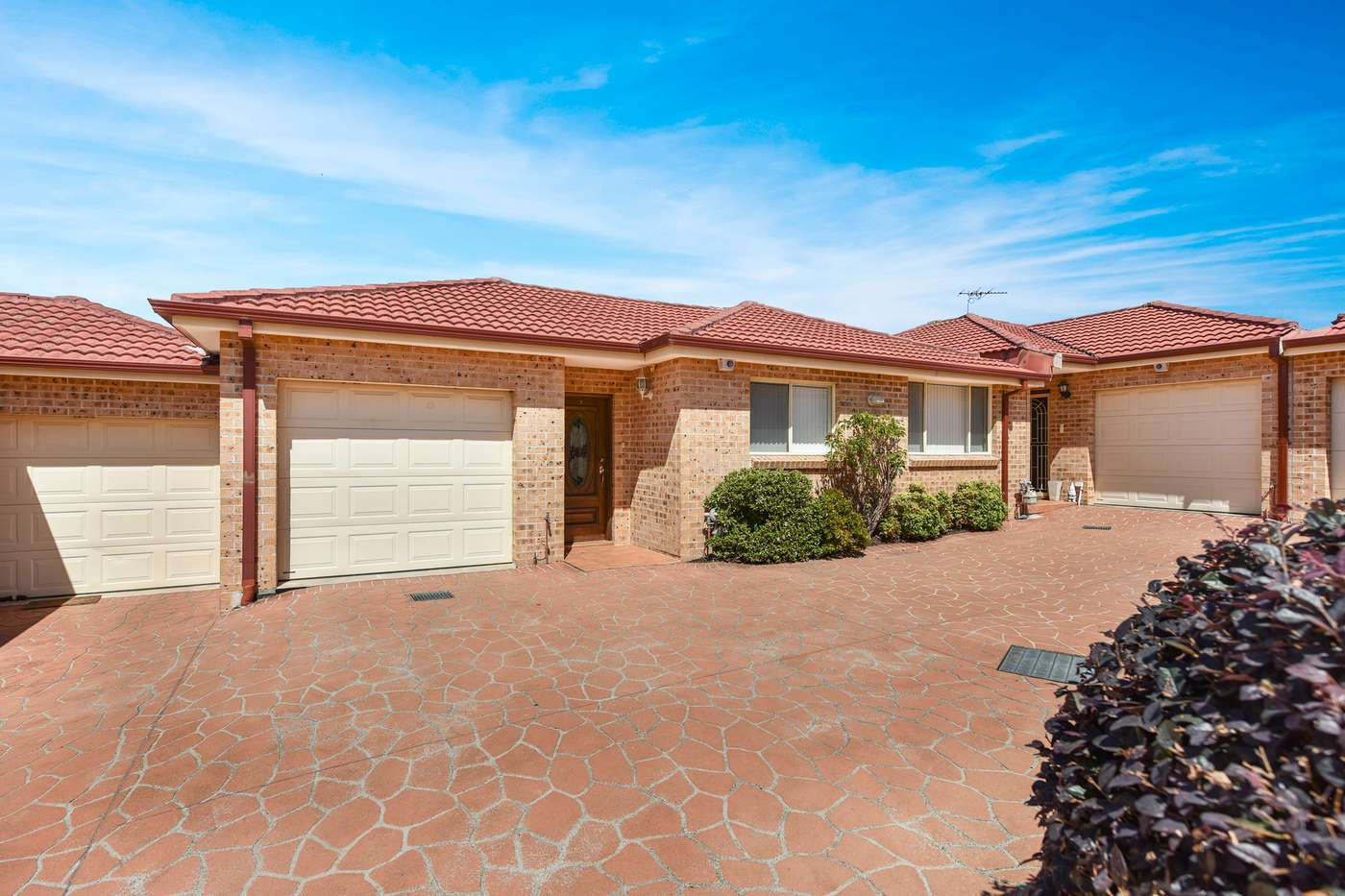 Main view of Homely villa listing, 3/59 Canonbury Grove, Bexley North, NSW 2207