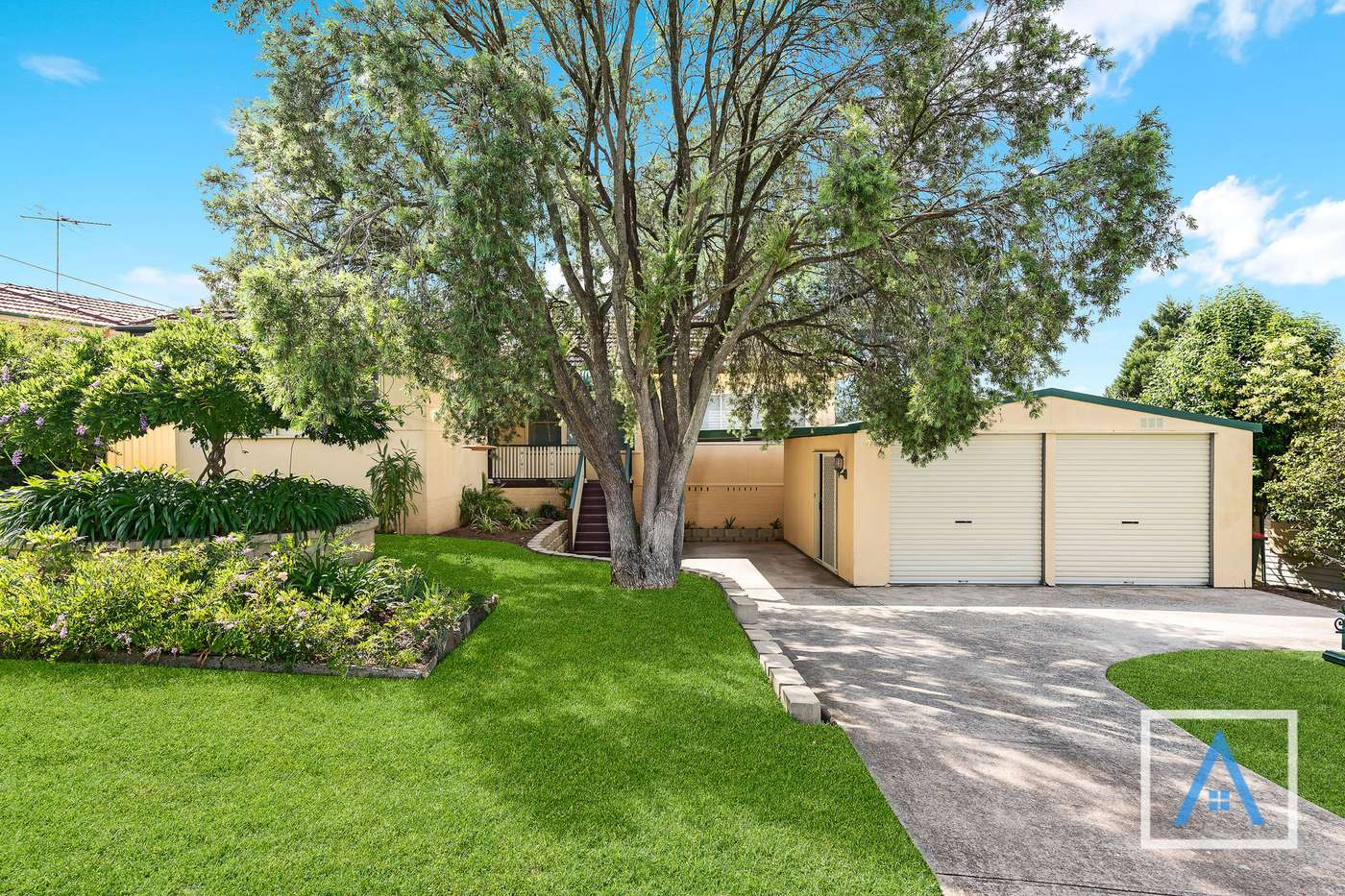 Main view of Homely house listing, 19 Carcoola Street, Campbelltown, NSW 2560