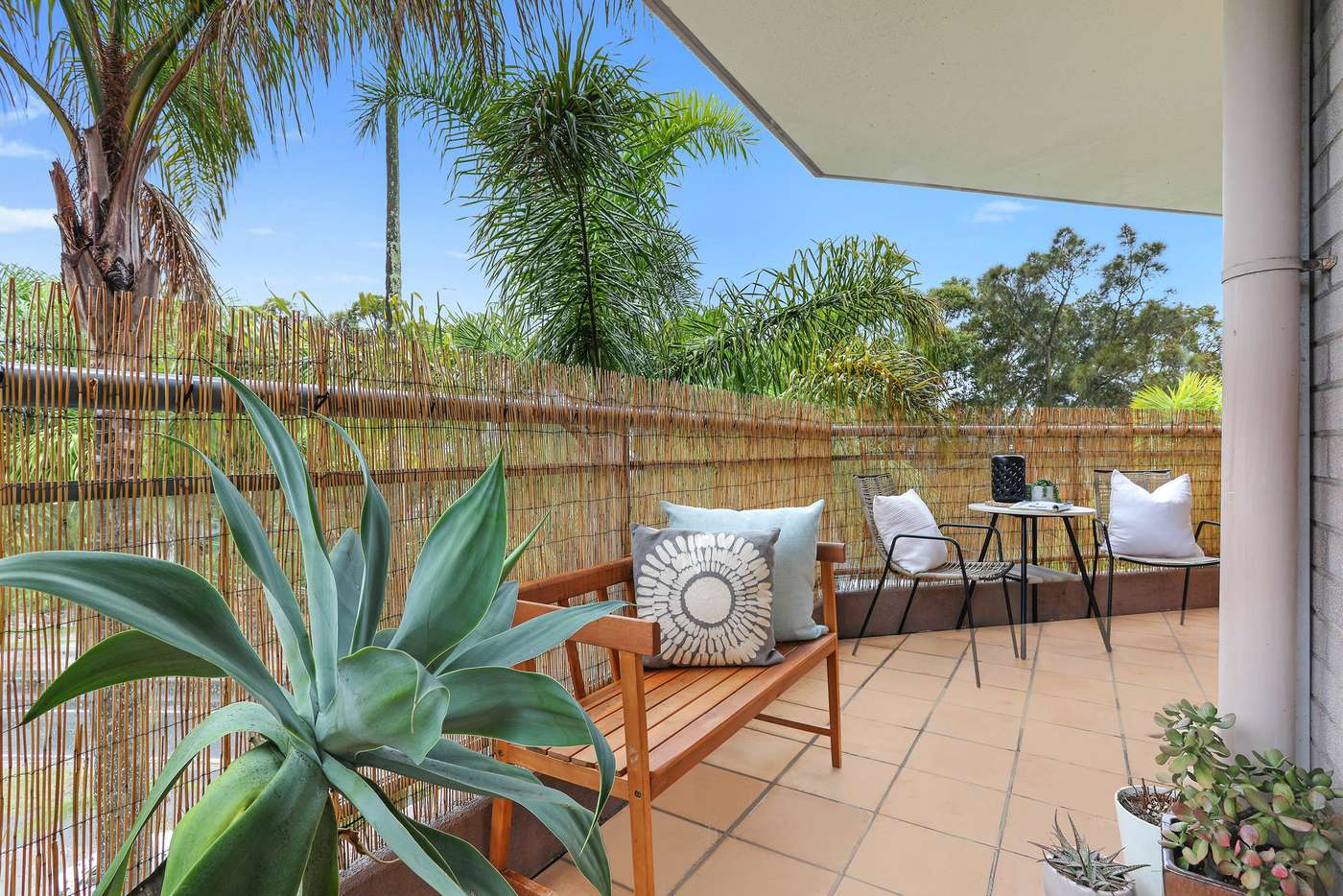 Sixth view of Homely apartment listing, 6/156 Old South Head Road, Bellevue Hill NSW 2023
