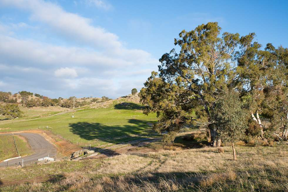 Third view of Homely residentialLand listing, Lot 7 Wilkinsons Road, Sedgwick VIC 3551