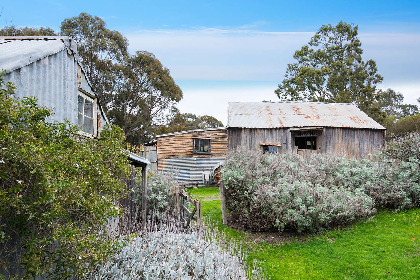 Fifth view of Homely house listing, 8 Oswald Street, Maldon VIC 3463