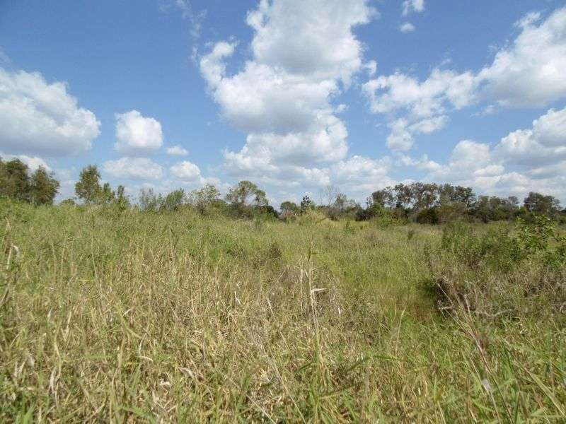 Main view of Homely  listing, Lot 12 Mill Road, Cordalba, QLD 4660