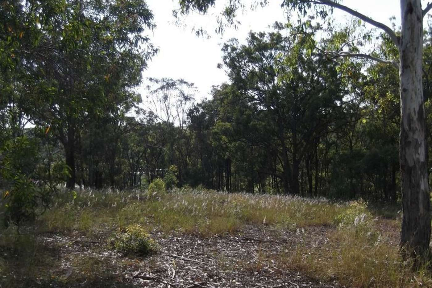 Sixth view of Homely residentialLand listing, 12 Sanctuary Court, Apple Tree Creek QLD 4660