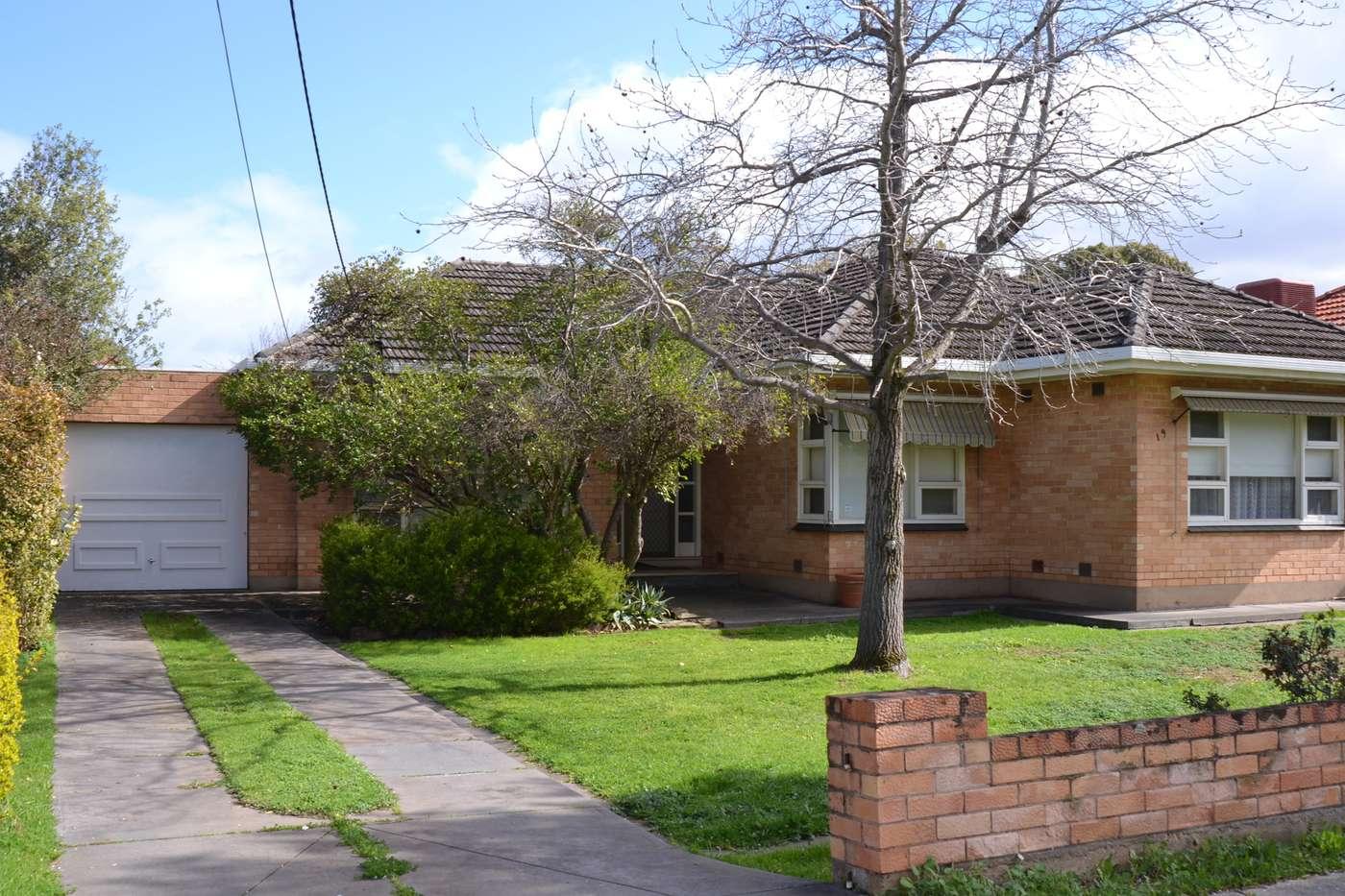Main view of Homely house listing, 19 Osborn Terrace, Plympton, SA 5038