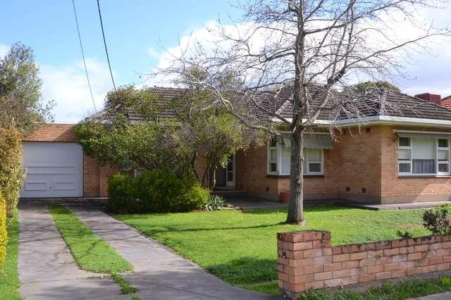 19 Osborn Terrace, Plympton SA 5038
