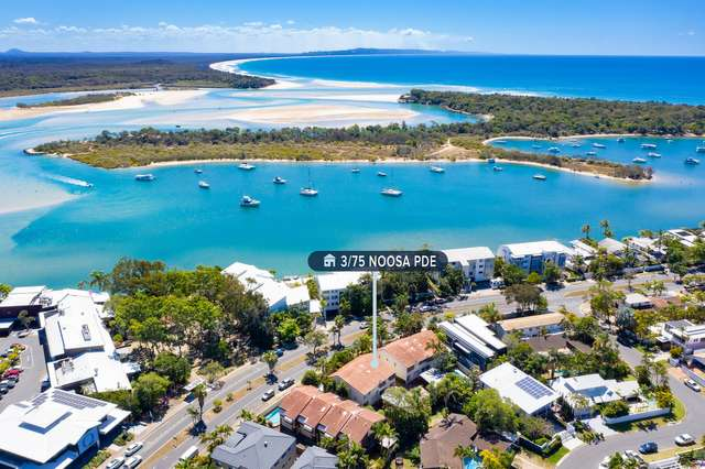 3/75 Noosa Parade, Noosa Heads QLD 4567
