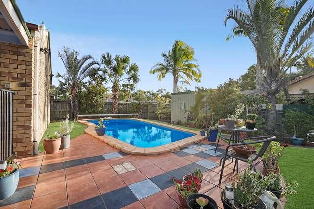 24 Rainbird Court, Palmwoods QLD 4555
