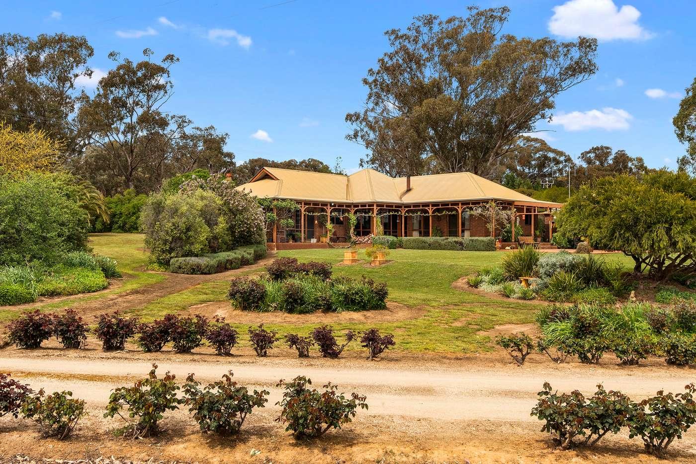 Main view of Homely house listing, 242 Nankervis Road, Mandurang VIC 3551