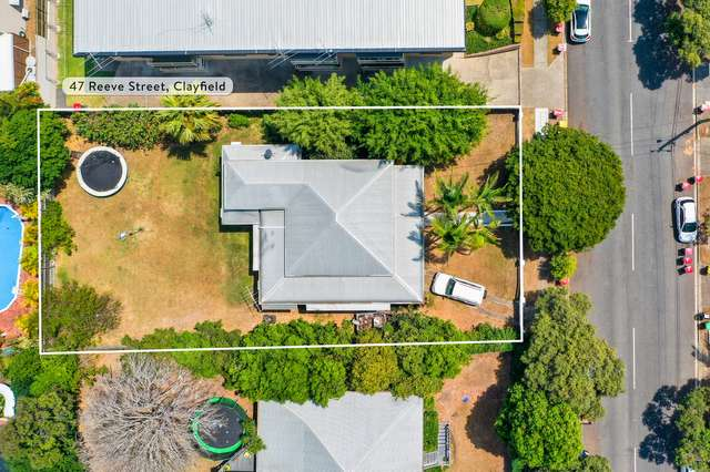 47 Reeve Street, Clayfield QLD 4011