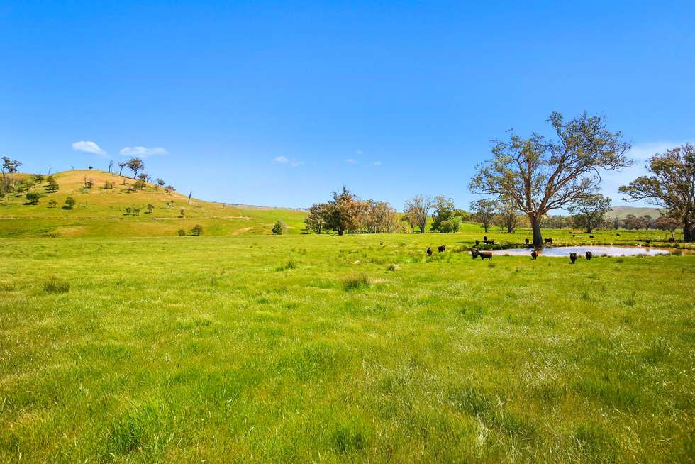 Fifth view of Homely ruralOther listing, 262 Clarks Road, Yea VIC 3717