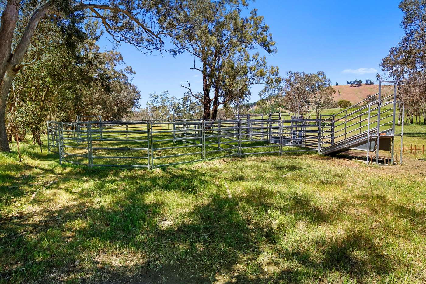 Seventh view of Homely ruralOther listing, 262 Clarks Road, Yea VIC 3717