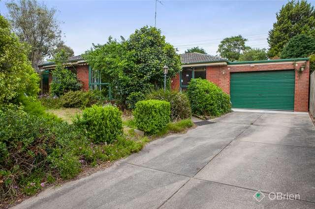 13 Tarbet Court, Endeavour Hills VIC 3802