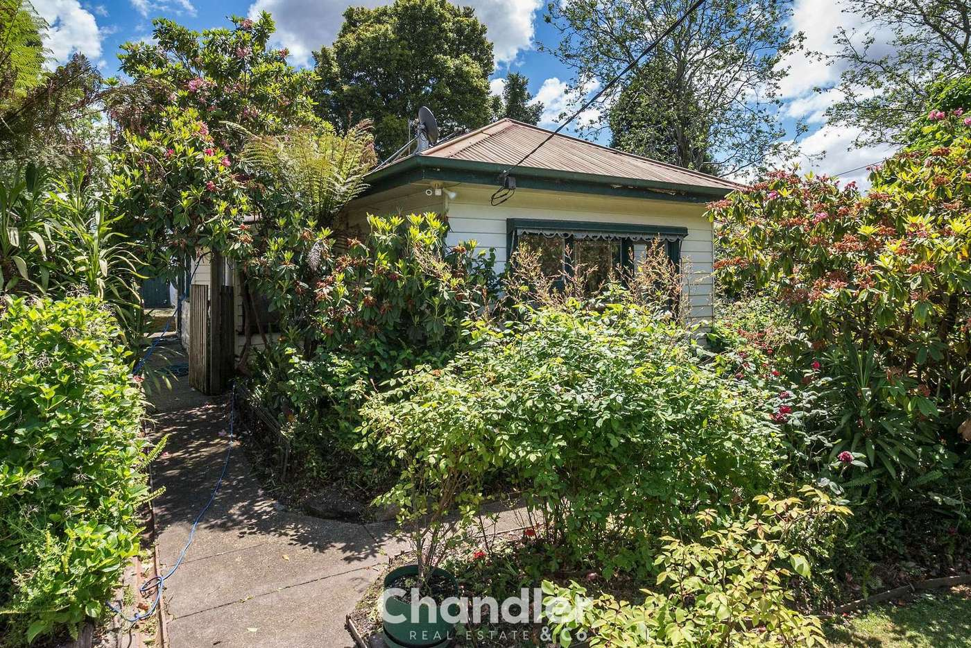 Sixth view of Homely house listing, 3 McLaren Street, Upwey VIC 3158