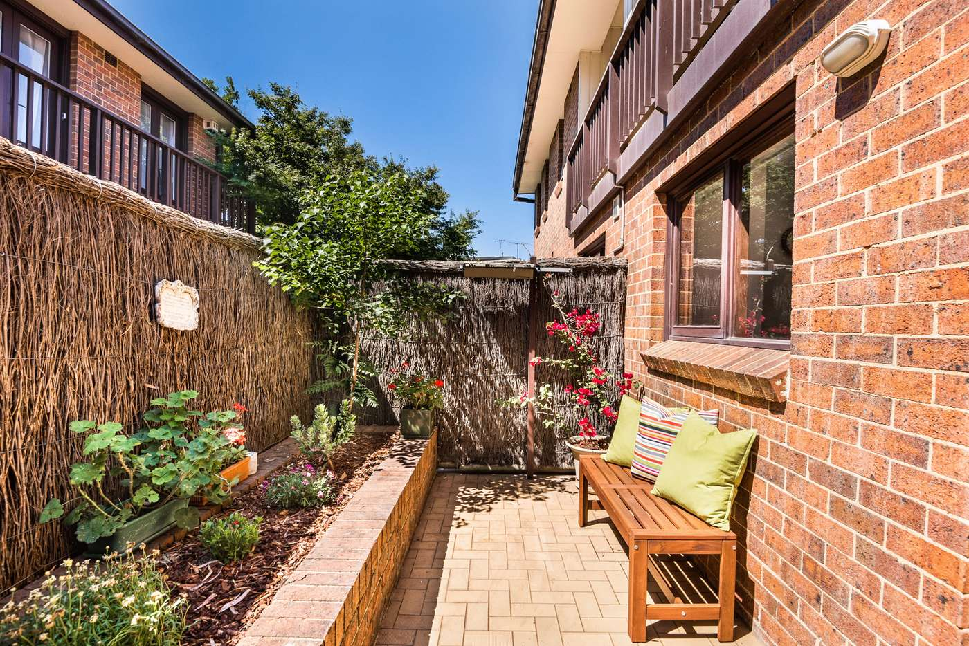 Seventh view of Homely house listing, 3/13-15 Withecombe Street, Rozelle NSW 2039