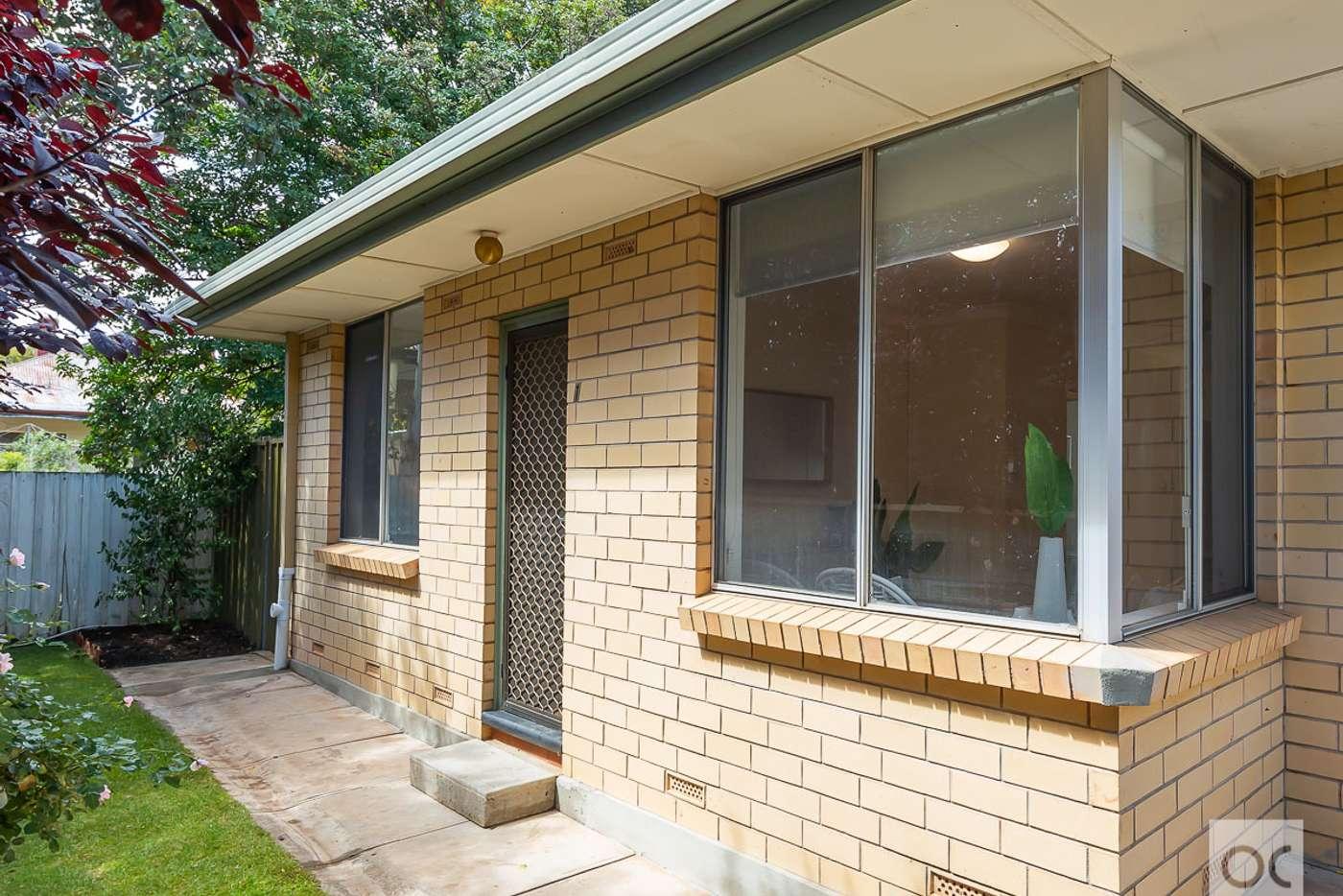 Main view of Homely unit listing, 1/147 Third Avenue, Royston Park SA 5070