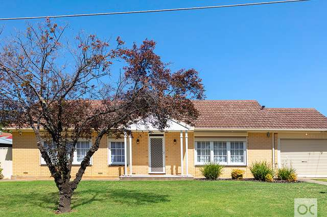 1 Hollister Avenue, Campbelltown SA 5074