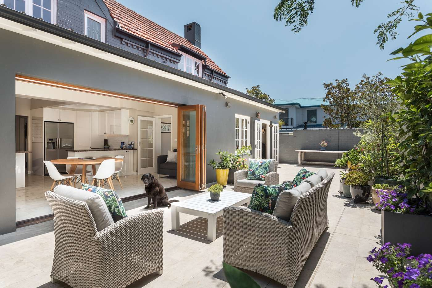 Sixth view of Homely house listing, 23 Euryalus Street, Mosman NSW 2088