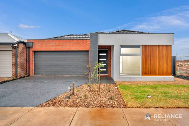 17 Stonefly Circuit, Melton South VIC 3338