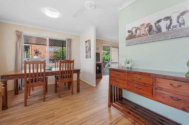 19 Stanley Street, Palmwoods QLD 4555