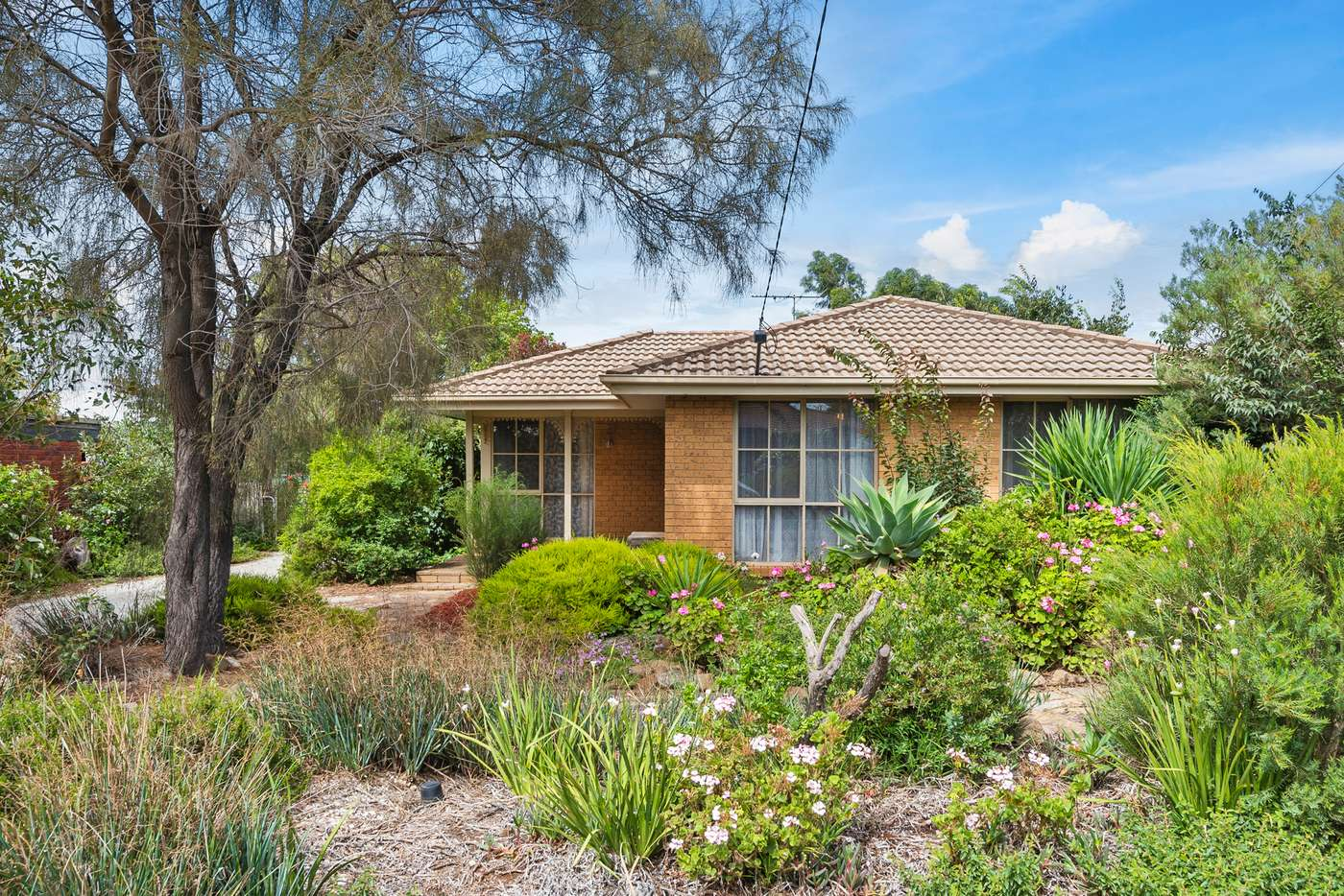 Main view of Homely house listing, 18 Leila Court, Bacchus Marsh VIC 3340
