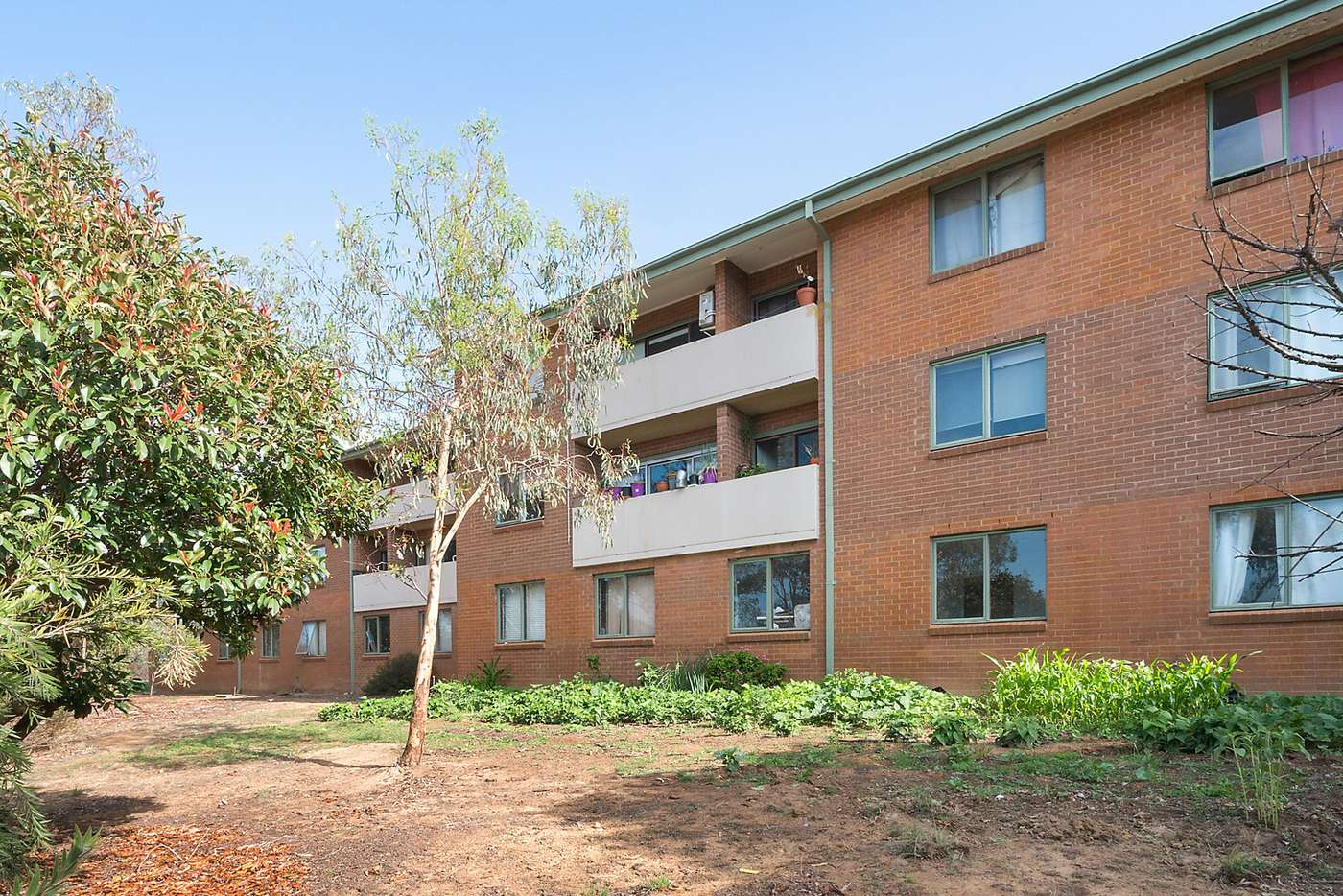 Main view of Homely unit listing, 13/26 Springvale Drive, Hawker ACT 2614