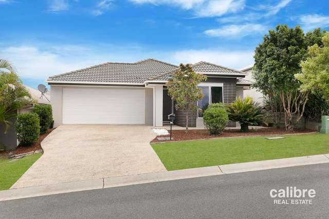 22 Borbidge Street, North Lakes QLD 4509