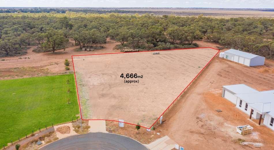 LOT 11 Wurlong Drive, Gol Gol NSW 2738