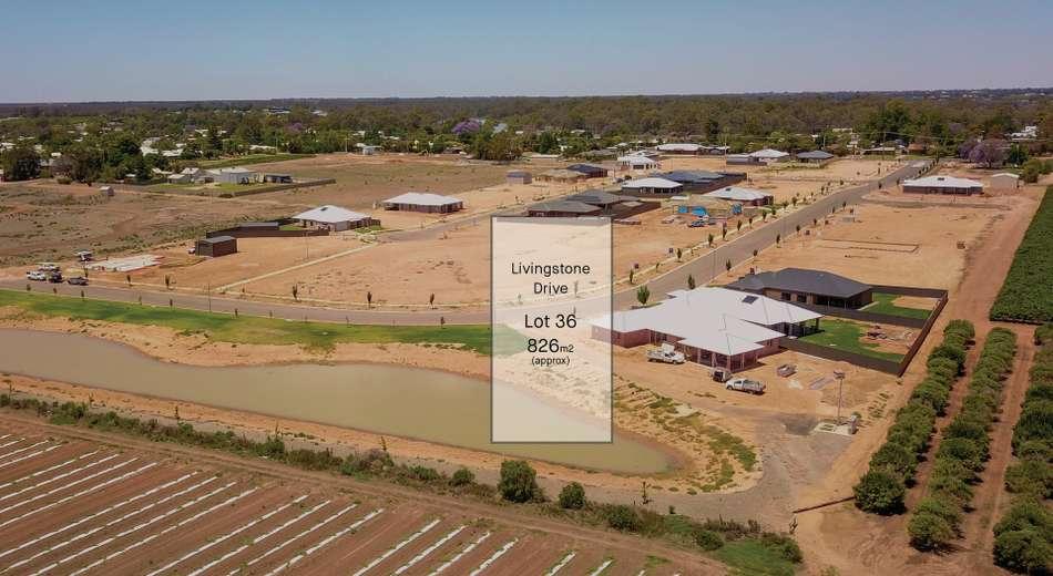 20 Livingstone Drive, Gol Gol NSW 2738