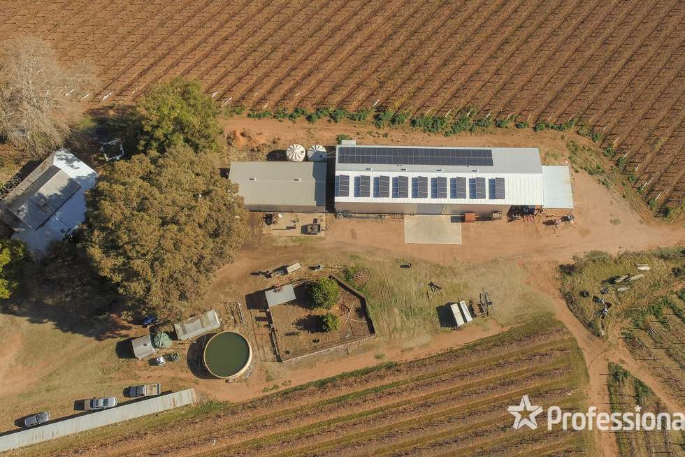 Second view of Homely viticulture listing, 248 Sunnycliffs Crescent, Sunnycliffs VIC 3496