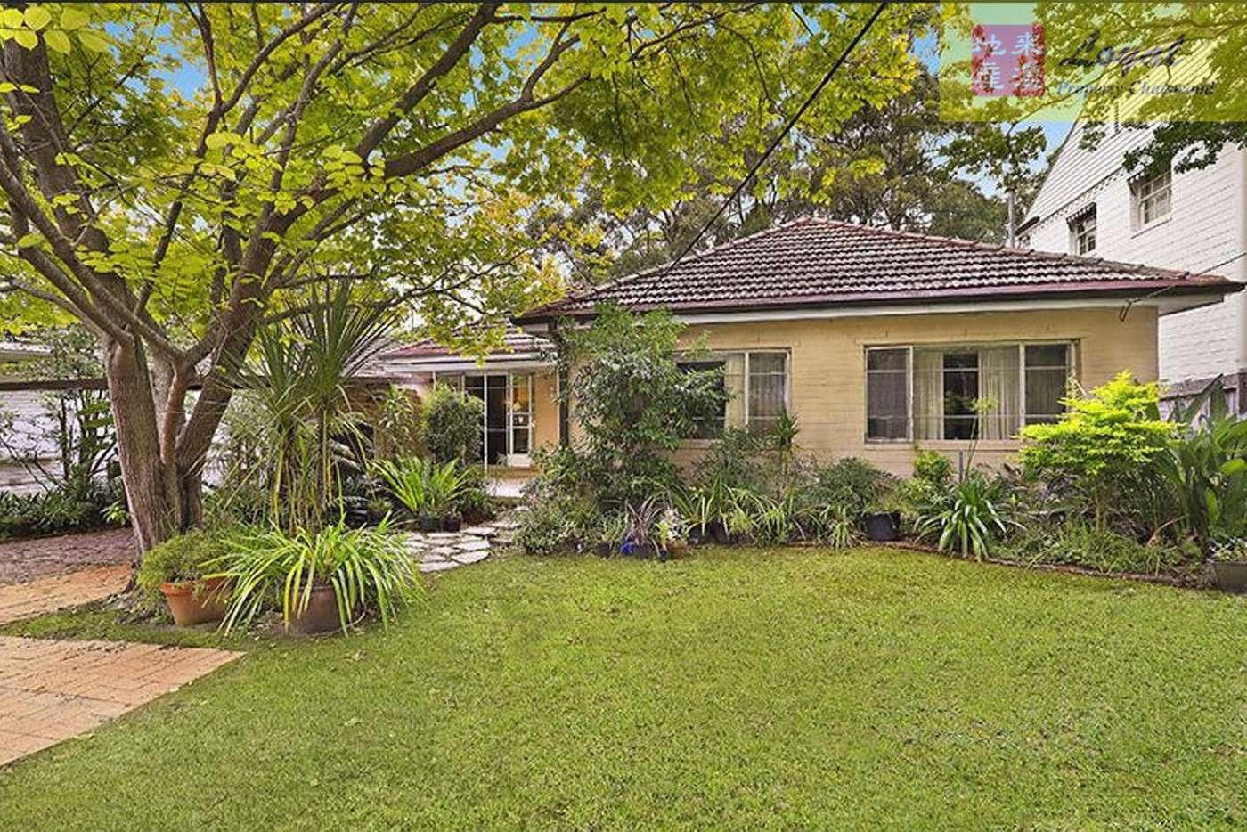 Main view of Homely house listing, 8 Cadow Street, Pymble NSW 2073