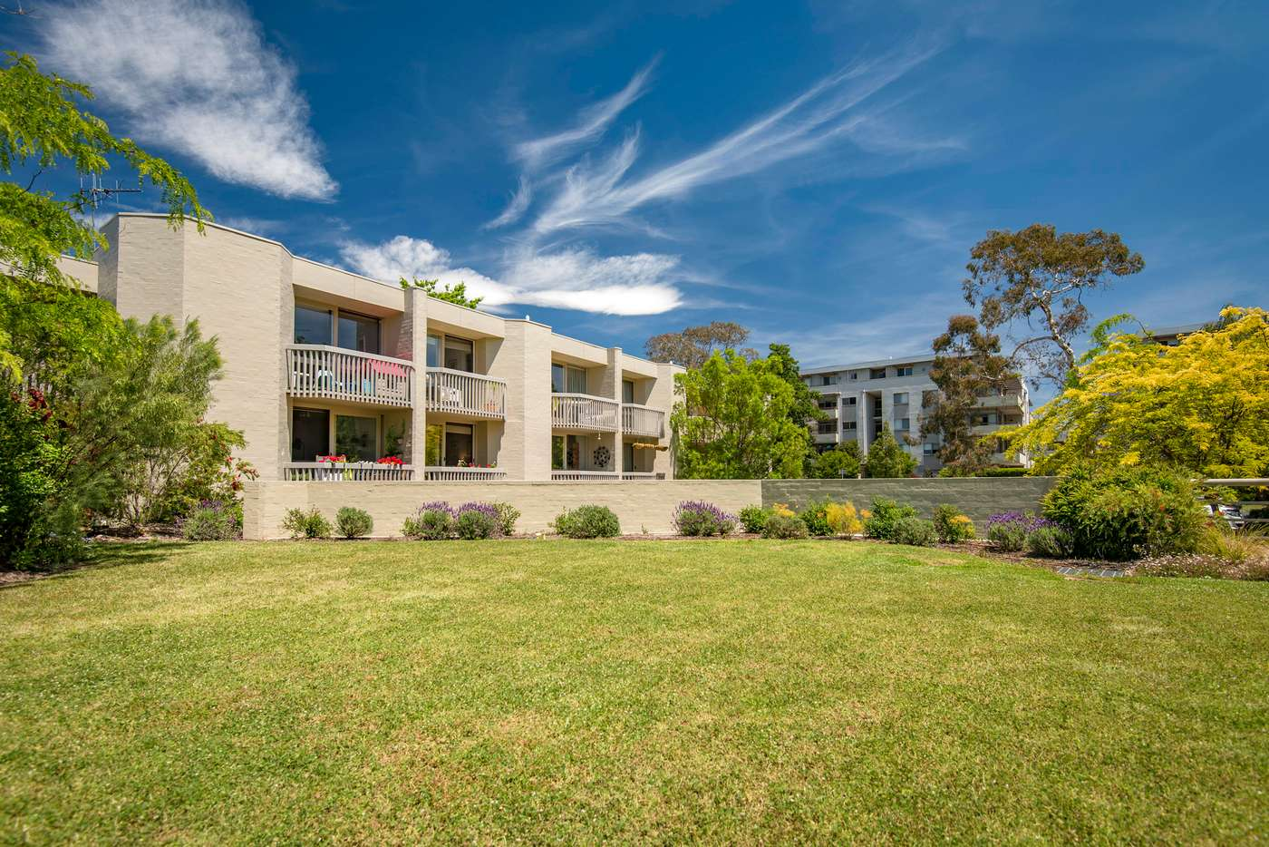 Main view of Homely townhouse listing, 29 Darling Street, Barton ACT 2600