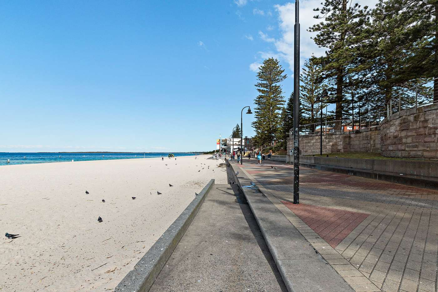 Main view of Homely apartment listing, 8/49 Kings Road, Brighton-le-sands NSW 2216