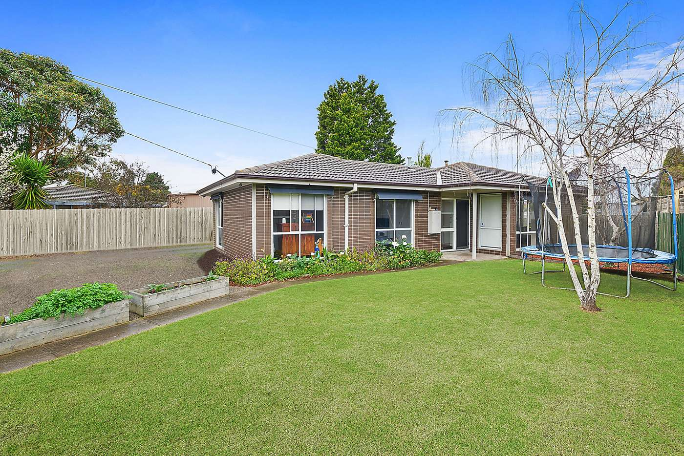 Main view of Homely house listing, 169 Solar Drive, Whittington VIC 3219