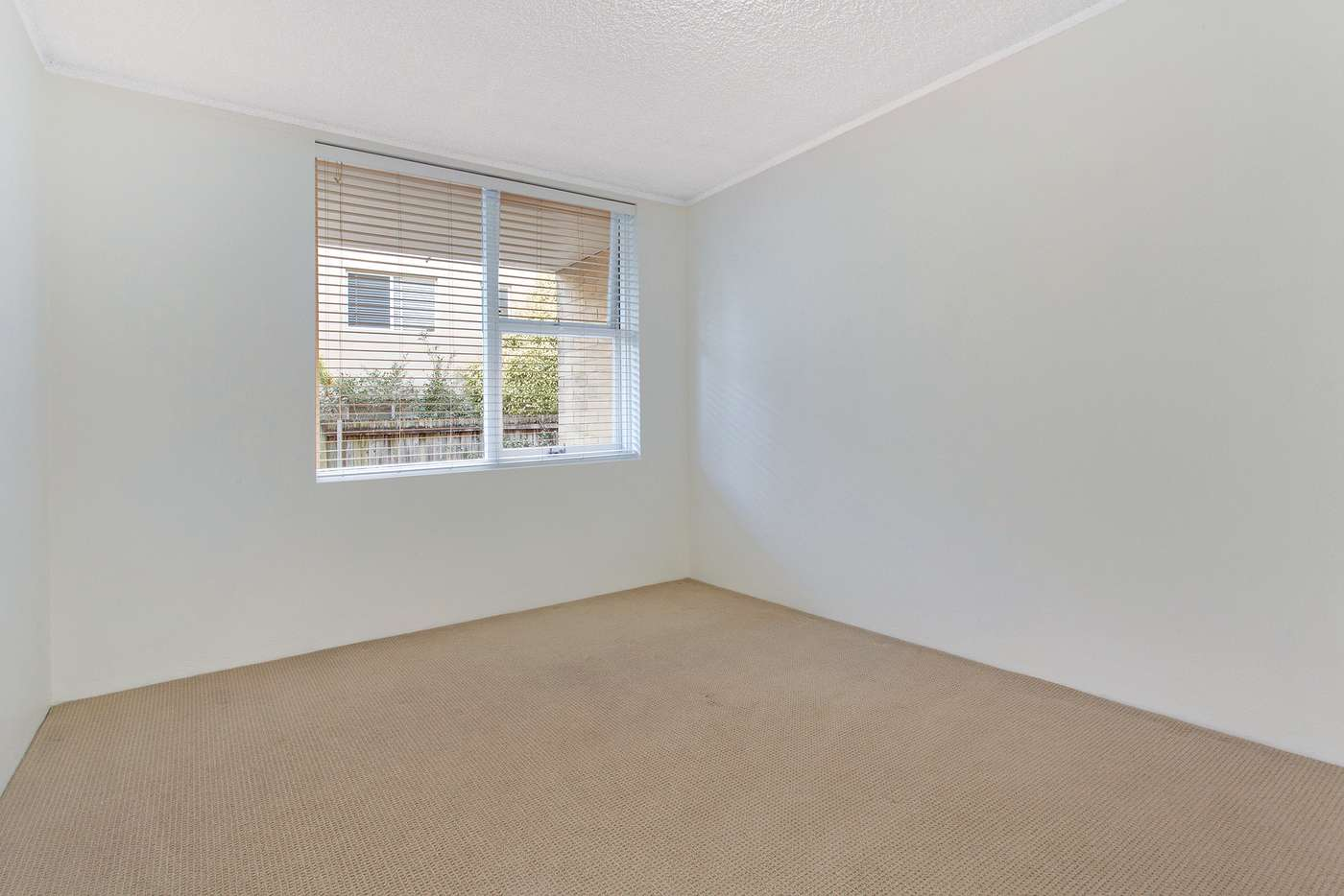 Fourth view of Homely apartment listing, 3/6 Campbell Parade, Manly Vale NSW 2093