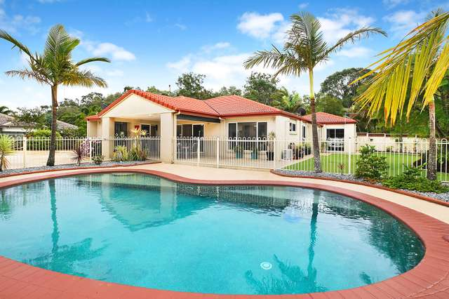 61 Koala Court, Little Mountain QLD 4551