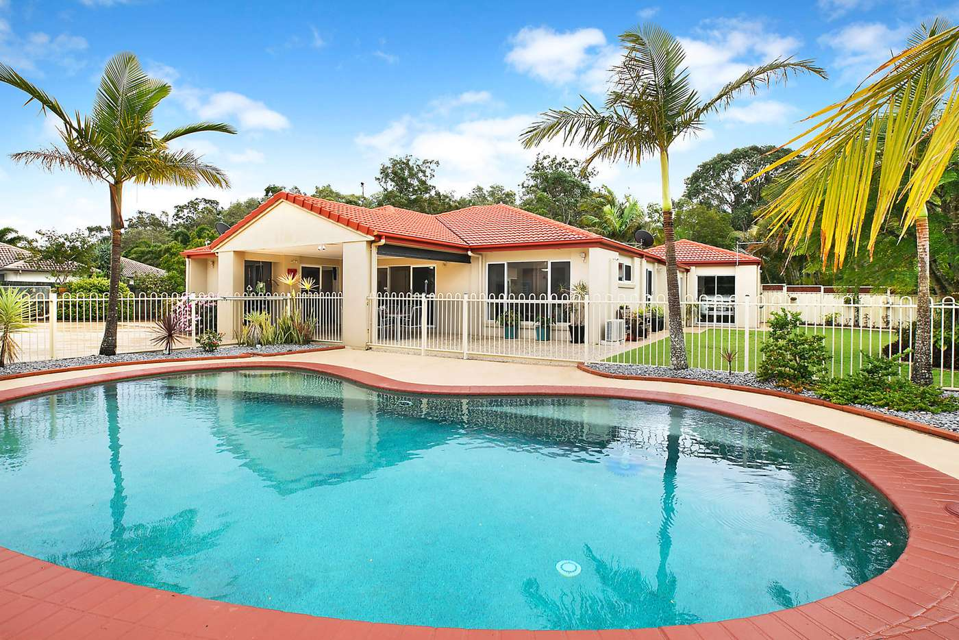 Main view of Homely house listing, 61 Koala Court, Little Mountain QLD 4551