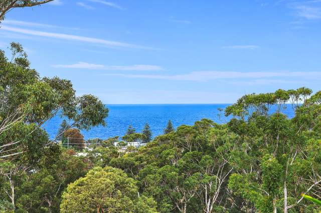 31 Beachcomber Parade, North Avoca NSW 2260