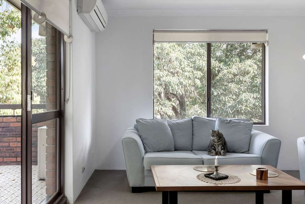 Third view of Homely apartment listing, 11/15-17 Albert Parade, Ashfield NSW 2131