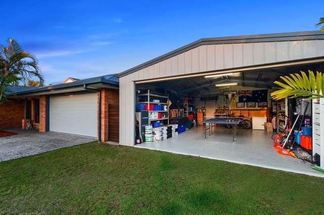 12 Kalmia Place, Mountain Creek QLD 4557