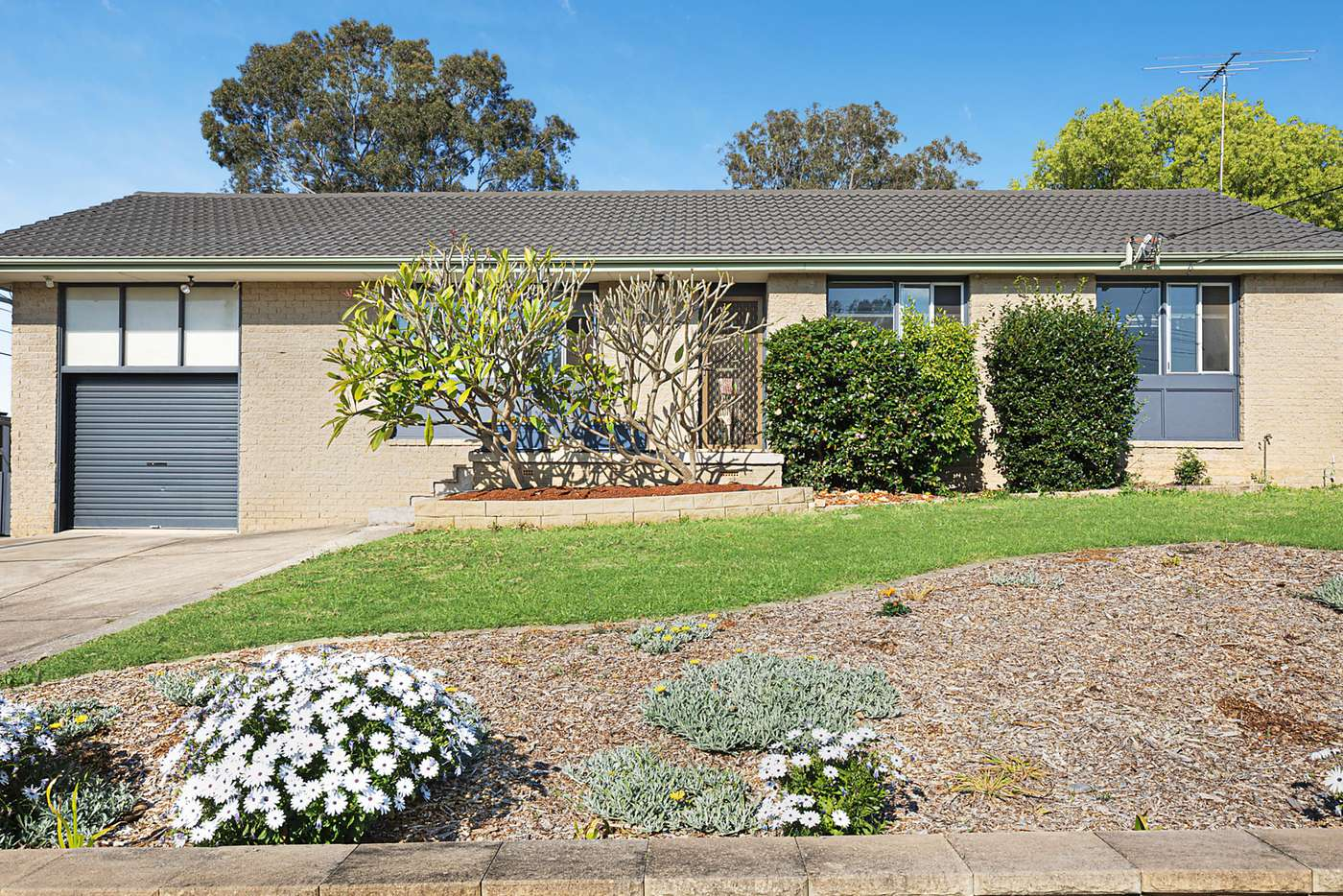 Main view of Homely house listing, 19 Fraser Street, Constitution Hill NSW 2145