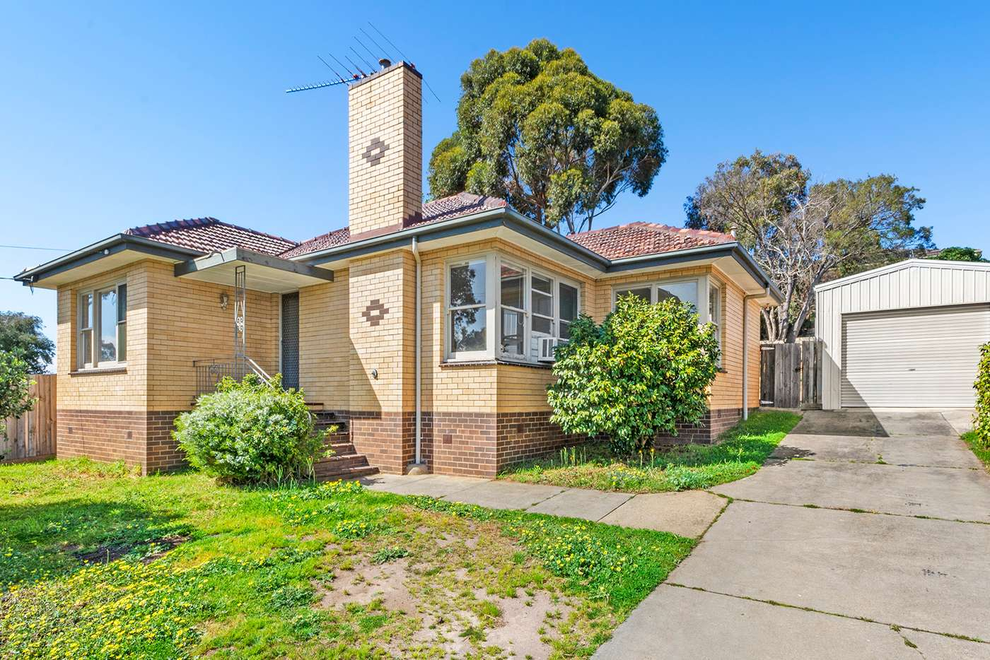Main view of Homely house listing, 331 Roslyn Road, Highton VIC 3216