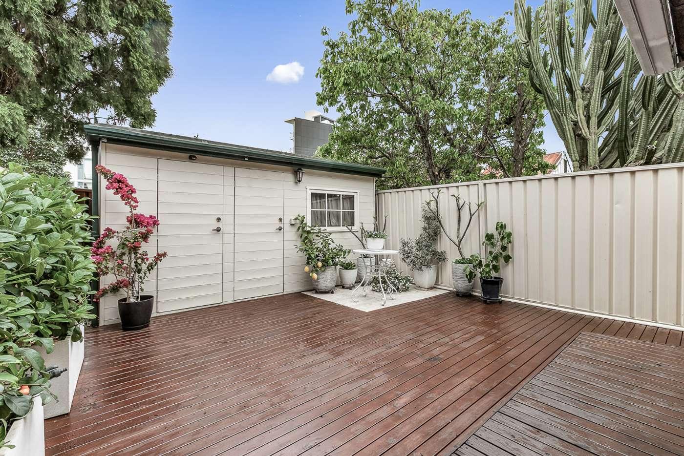 Fifth view of Homely house listing, 20 Milton Street North, Ashfield NSW 2131