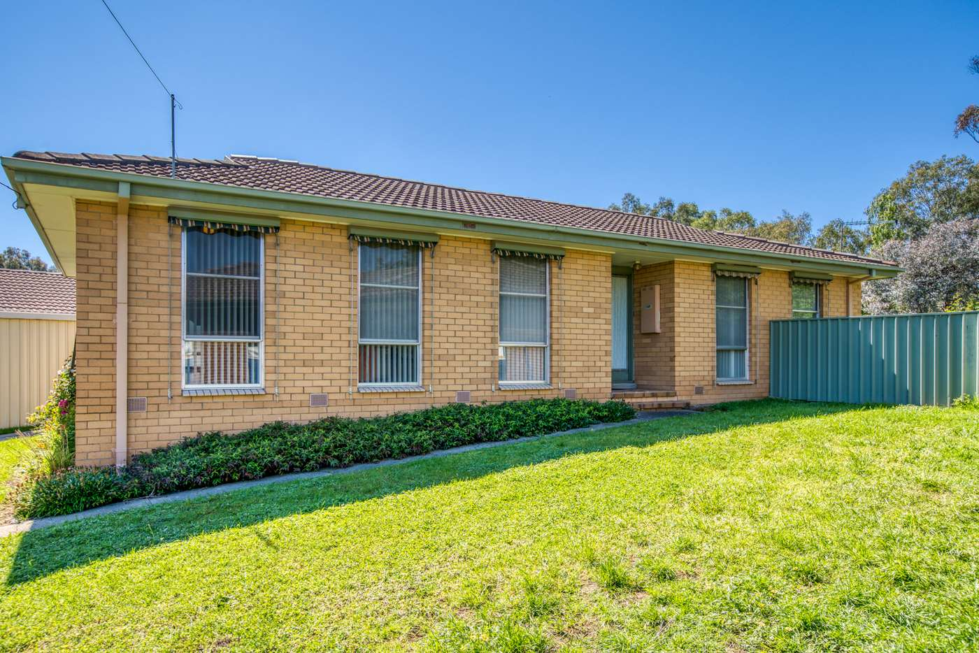 Main view of Homely house listing, 21 Melgaard Court, Wodonga VIC 3690