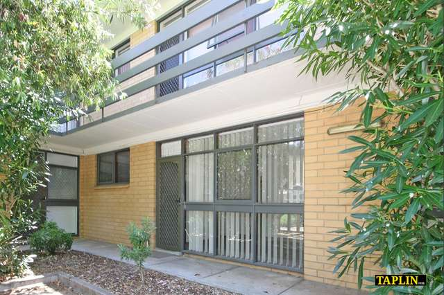 5/88 Sussex Street, North Adelaide SA 5006