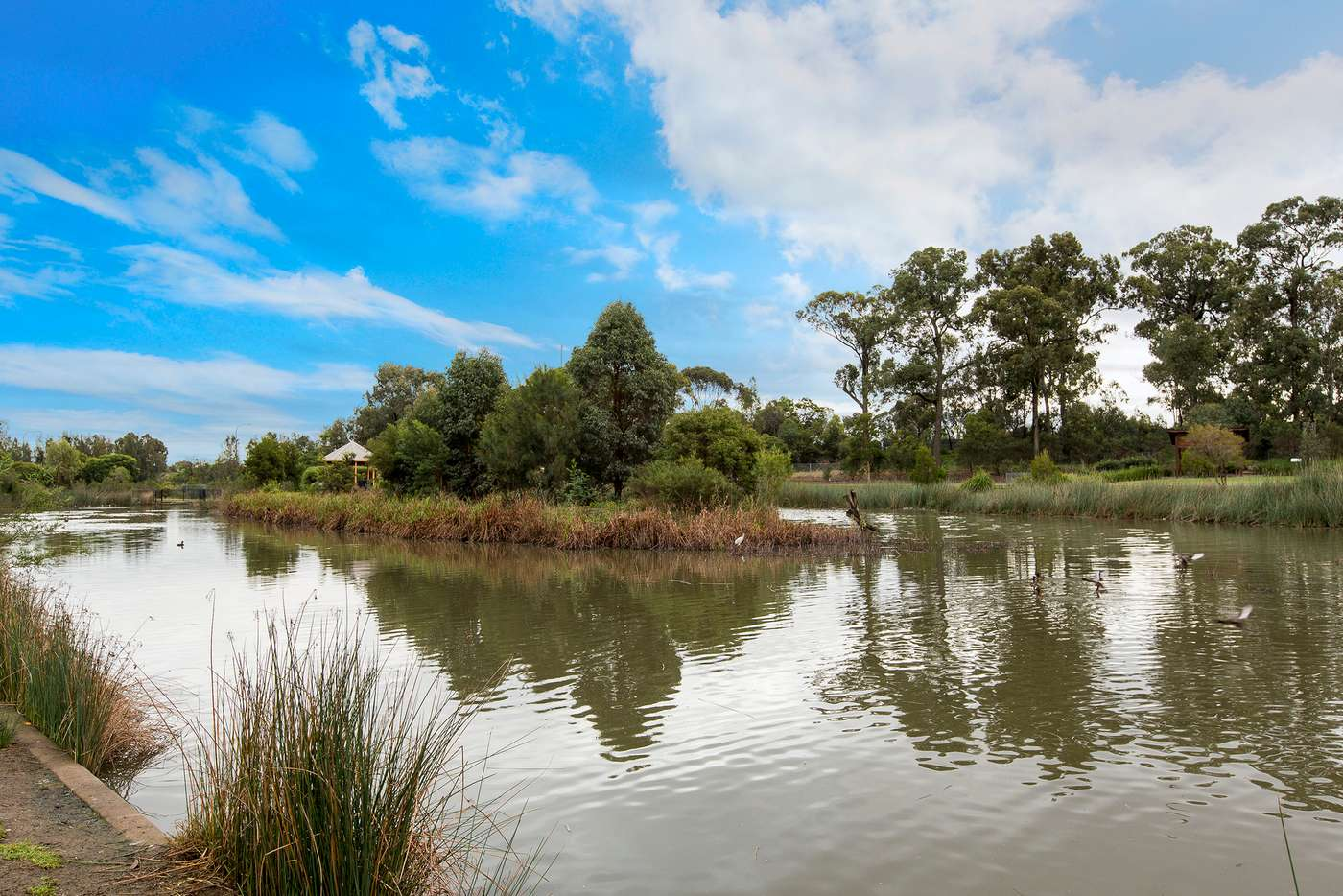 Sixth view of Homely apartment listing, 504/11A Washington Avenue, Riverwood NSW 2210