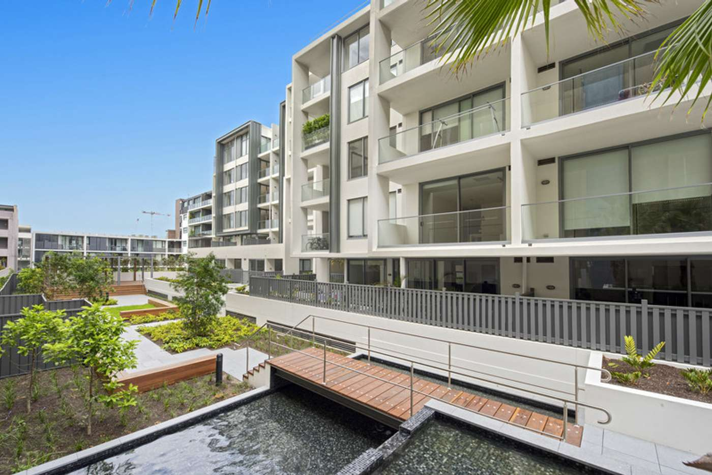 Main view of Homely apartment listing, D432/810-822 Elizabeth Street, Waterloo NSW 2017