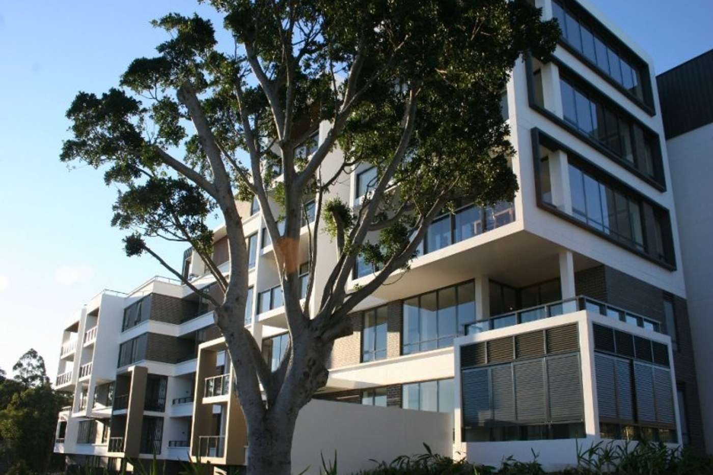 Sixth view of Homely apartment listing, E102/7 Lardelli Drive, Ryde NSW 2112