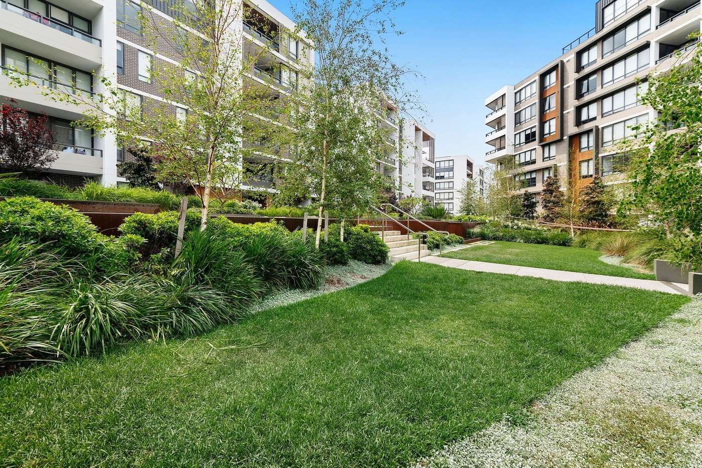 Main view of Homely apartment listing, G03N/5 Lardelli Drive, Ryde NSW 2112